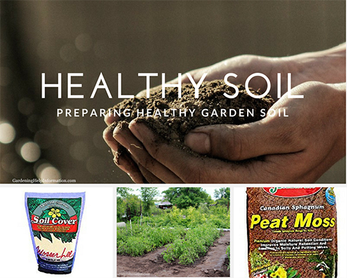 Preparing Healthy Garden Soil