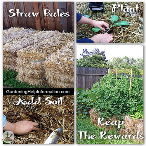 Easy Gardening with Straw Bales