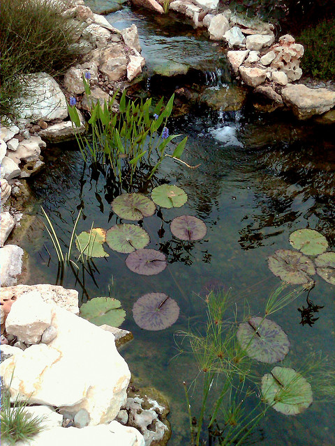 Waterfall Design in Pond - Who says you need a large pond? This size is perfect for just about any yard. Start small and add water features and plants each year to achieve the look you want.