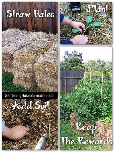 Easy Gardening With Straw Bales - Straw Bale Gardening