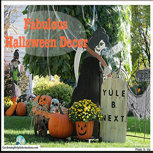 Ideas for decorating your yard for halloween