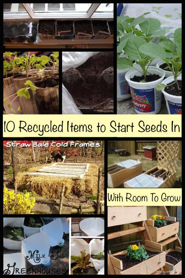 Recycled Things to Plant Seeds In
