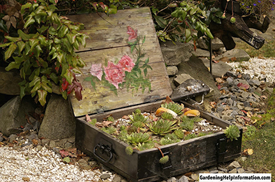 Suitcase Planter for the Garden