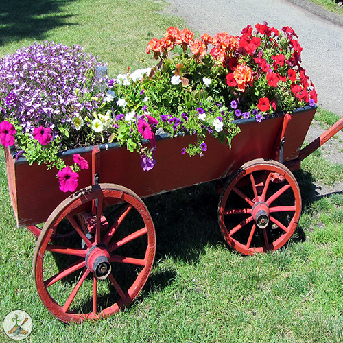The just humming along wagon is an old wagon repurposed into a hummingbird flower feeder fiesta
