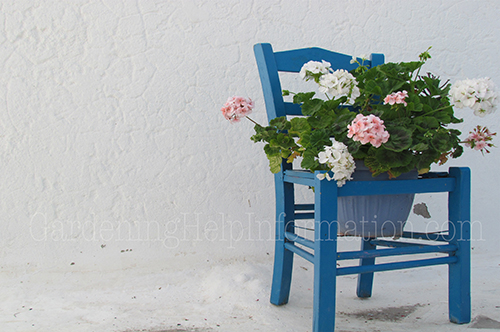 Flower Pot Chair- Simplicity. Bold, bright and blue painted flower pot chair paired with striking white and pink geraniumsannuals in the very pot they were purchased in. Simple way to add character to a plain porch.