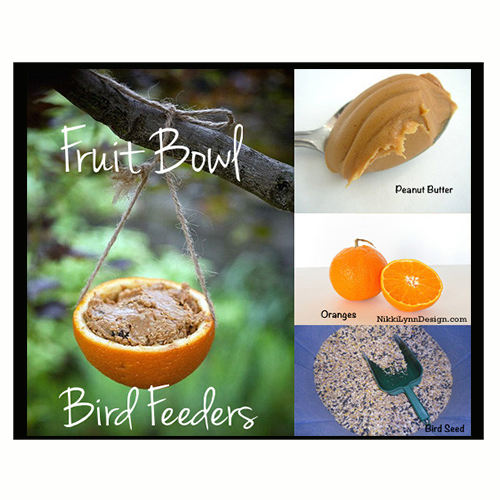 Fruit Bowl Bird Feeders