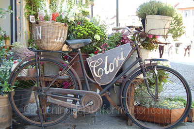 Garden Bicycle with Planted Baskets
