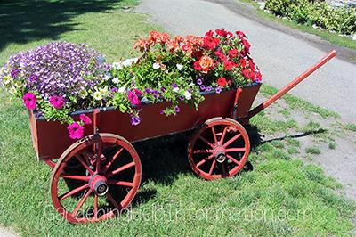 Just Humming Along Garden Wagon Planter -