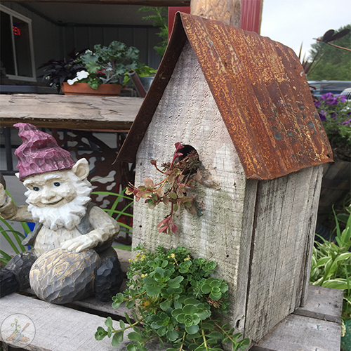 Repurpose an old birdhouse as a flower pot planter with low growing annuals and greens