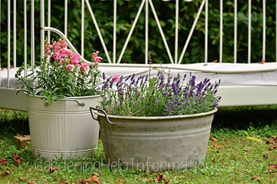 Simple is Beautiful Old Antique Garden Planting Tubs