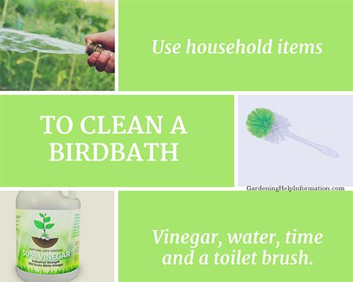 To Clean a Birdbath