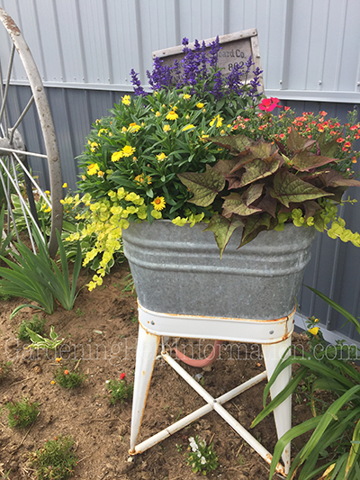 Wash Tub Planter - Wash day?  Nah, planting day.  The old wash board adds extra visual interest to the wash tub planter.