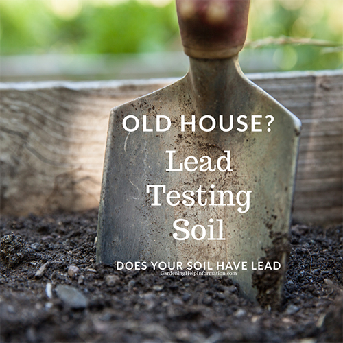 f your vegetable garden is located near or next to a home, barn or additional structure that was built before 1978 you should test your soil for lead before planting your vegetable or flower gardens.