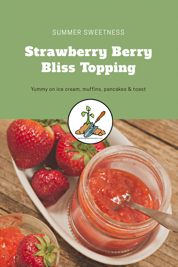 Strawberry Berry Bliss Topping