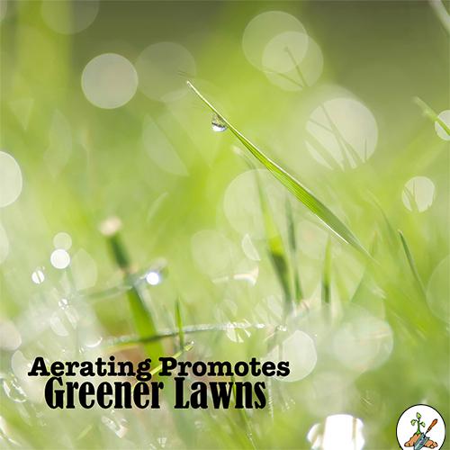 Aerating Promotes Greener Lawns