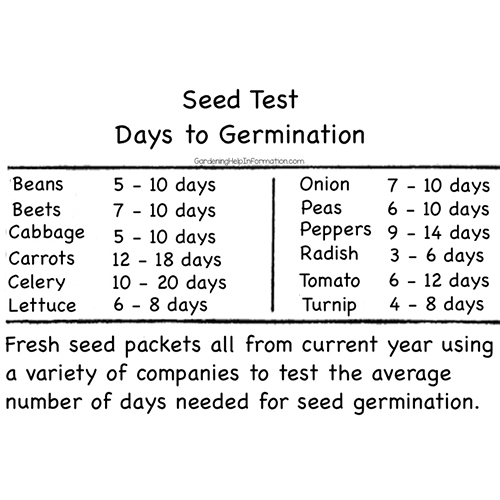 Testing How Long Does it Take Seeds To Germinate