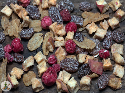 Dry apples, cherries and grapes. Collect  plentiful tree nuts like acorns, pine nuts, walnuts and hickory nuts