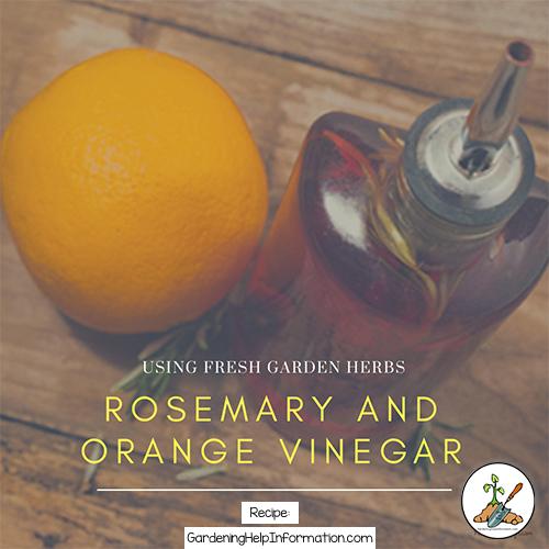Rosemary Herb and Orange Vinegar Dressing Recipe