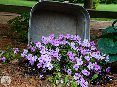 Spilling Over Garden Flower Container Wash Tub Planted With Pansies