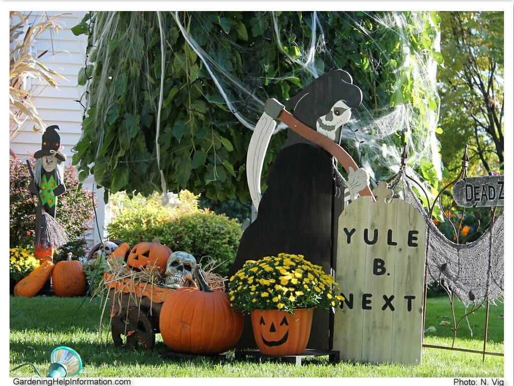 Decorating Ideas > Decorating Your Yard For Halloween  Weed It & Reap! ~ 204530_Halloween Lawn Decoration Ideas